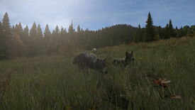 Image for Awooo! DayZ Teases Predatory Animals