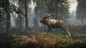 Image for Time for a stroll! theHunter: Call of the Wild released