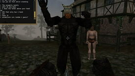 Image for Morrowind gets multiplayer with OpenMW's TES3MP