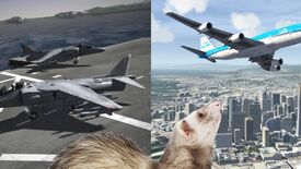 Image for The Flare Path: Ferrets