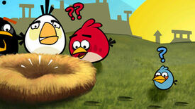 Image for Angry Internet Birds