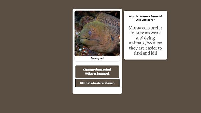 An image of a moray eel, alongside a text box reminding you that they hunt weak and dying animals for convenience.