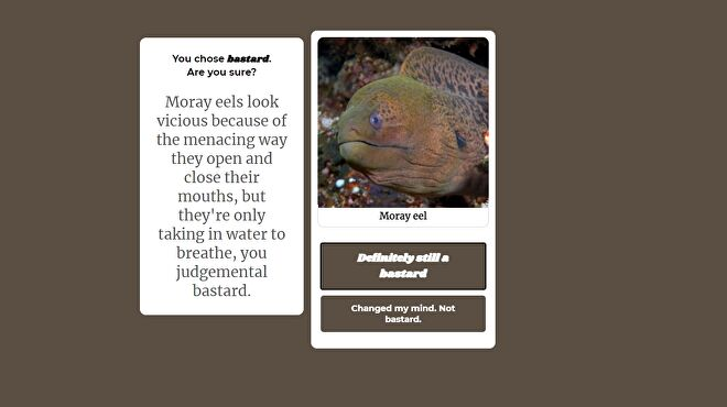 An image of a moray eel, alongside a text box castigating you for thinking the way they breathe looks sinister.