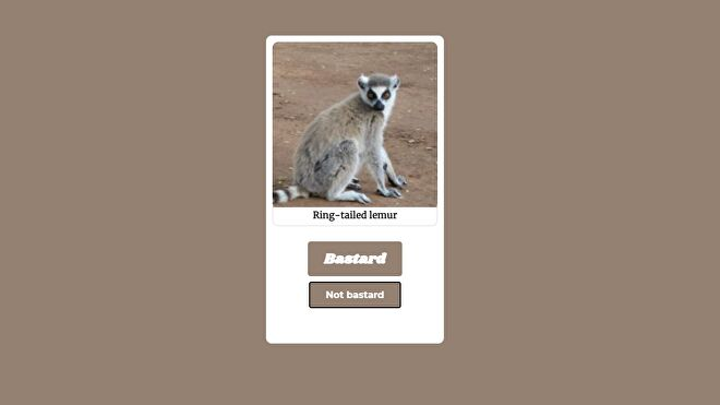 An image of a ring-tailed lemur, inviting you to consider whether it is a bastard or not.