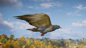 Image for Coo! Assassin's Creed Valhalla's Raven can be turned into a pigeon