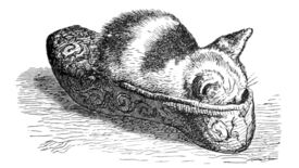 A cat sleeping in a slipper in an illustration from 'When Life is Young: a collection of verse for boys and girls'.