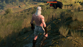 Image for A Witcher 3 Diary, Day 3: We're Going On A Bear Hunt