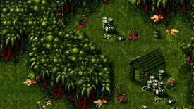 Image for Have You Played... Cannon Fodder?