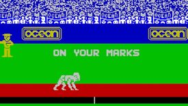 Image for Have You Played... Daley Thompson's Decathlon?
