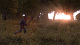 Image for DayZ Sells 13 Trillion Units In Four Seconds
