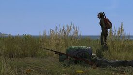 Image for The Future Of DayZ Isn't Hazy
