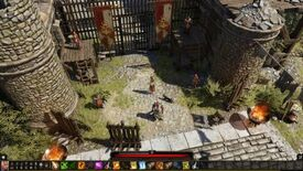 Image for Divinity: Original Sin 2 just killed my adopted cat, and I don't know what to do with myself