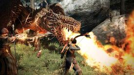 Image for Have You Played...Dragon's Dogma: Dark Arisen?