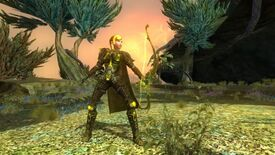 Image for Privilege Issues: Start Everquest II At Level 85