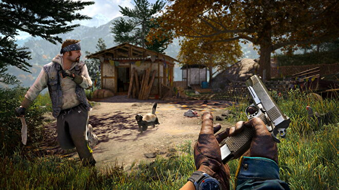 An image from Far Cry 4 which shows one player reloading, while another runs from an angry honey badger.