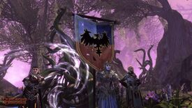 Image for Take A Peek At Neverwinter's Furious Feywild