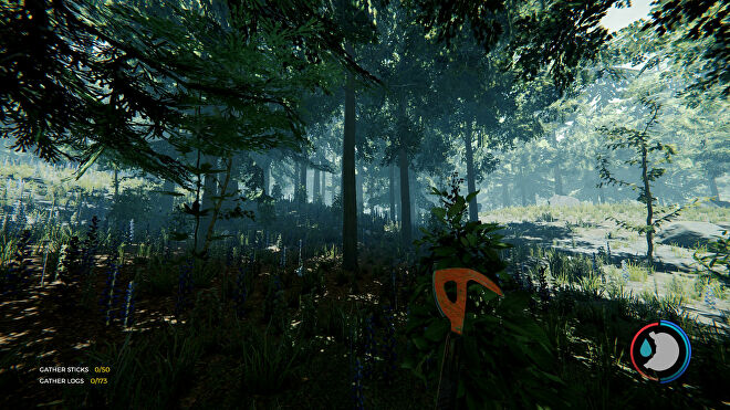 A shady forest scene in The Forest