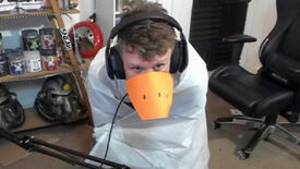 Image for Untitled Goose Game streamer made a goose costume into a controller
