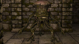 Image for The Legend Of Grimrock Has Reached Level 1.1.4