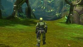 Image for More On Cancelled Halo MMO