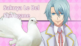 Image for Have You Played… Hatoful Boyfriend?