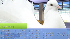 Image for Bird Watching: The Pigeon Dating Sim