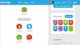 Image for Have You Played… Duolingo?