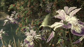Image for Walden, A Game: hummingbird spying as Henry David Thoreau