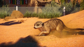 Image for Planet Zoo's Africa pack added excellent meerkats today