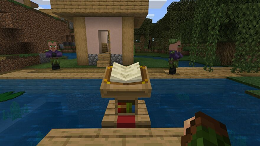 Minecraft book on a Lecturn in a Village