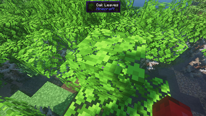 A Minecraft screenshot of some Oak Leaves, with the HWYLA mod displaying details about the block to the player.
