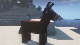 A Minecraft screenshot of a Mule standing on a beach.