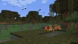 Two frogs sat in a swamp surrounded by fireflies in Minecraft