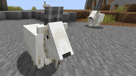A Minecraft screenshot of three Goats at varying distances from the player.