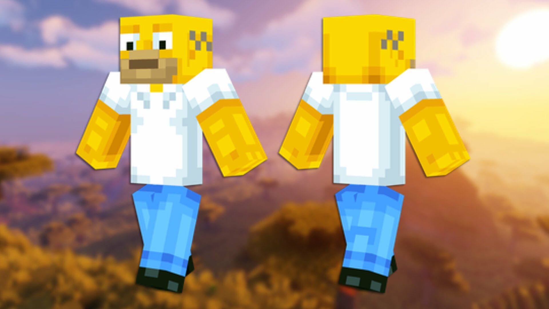 A front and back view of the Pug Minecraft skin.