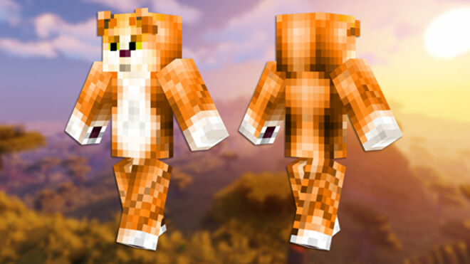 A front and back view of the Tabby Cat Minecraft skin.