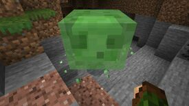 Minecraft large slime in a cave