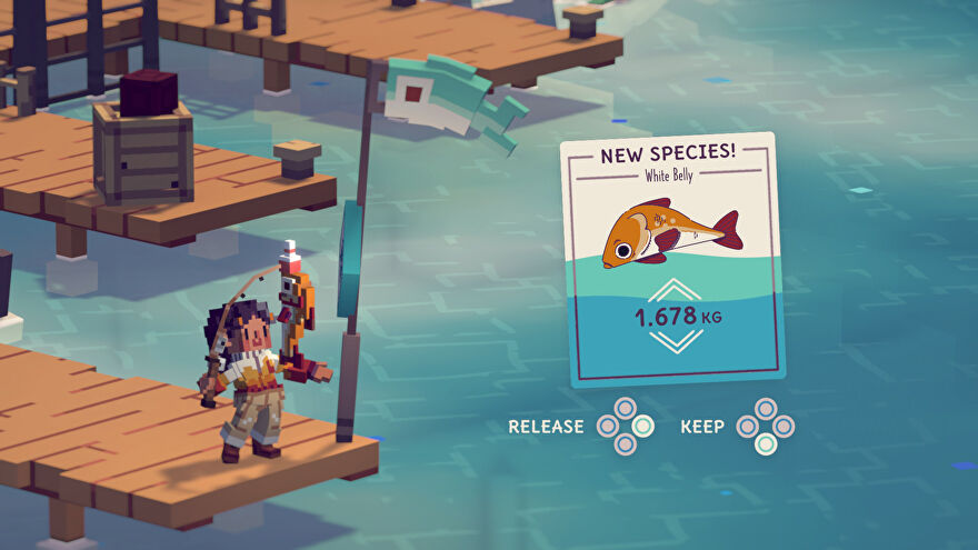 A screenshot of Moonglow Bay showing a person at the end of a pier holding a fishing rod, looking happy, while a UI element announces that a new fish species has been discovered.