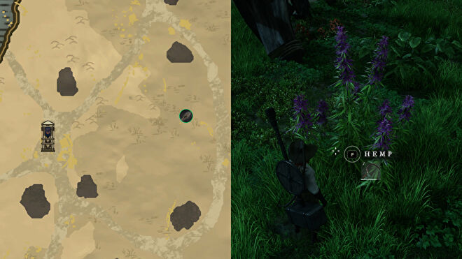 Left: part of the New World map showing the location of Hemp next to Monarch's Bluffs Watchtower. Right: a close-up of the Hemp in-game.