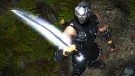 Image for The Ninja Gaiden trilogy arrives on PC this summer