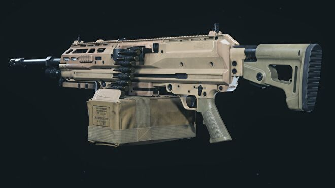The RAAL MG in Warzone