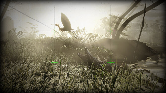 Red Dead Online - A camera viewfinder aims at an American Alligator snapping at a bird.