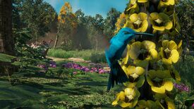 Image for Far Cry: New Dawn's hummingbirds are photo mode magic