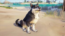 Image for Sea Of Thieves adds good dogs and treasure vaults next week