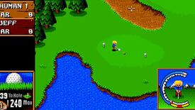 Image for Have You Played... Sensible Golf?