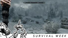 Image for How to make Skyrim a survival game