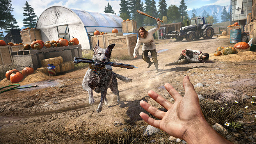 A woman chases after a dog with a gun in its mouth in Far Cry 5
