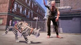Image for Max & Maya: Cat Simulator might not be the most authentic thing ever