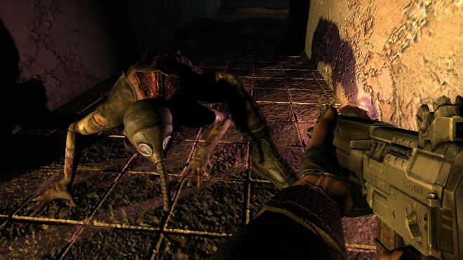 A image from Stalker Shadow Of Chernobyl which shows the player aiming at a creature that's wearing a gas mask and  crawling on all fours.