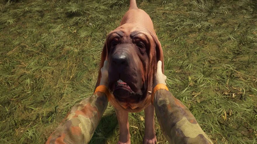 Petting a dog in TheHunter: Call Of The Wild's Bloodhound DLC.